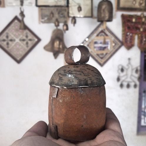 copper-bell-1-_fotor